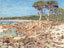 Way Out West: Bunker Bay, Cape Naturaliste SOLD